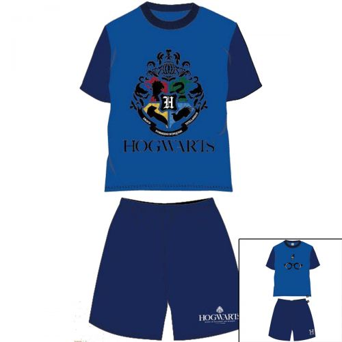 Clothing of 2 pieces Harry Potter from 8 to 16 years