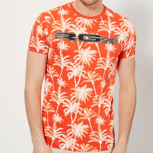 T-shirts with short sleeves RG512 from S to XL