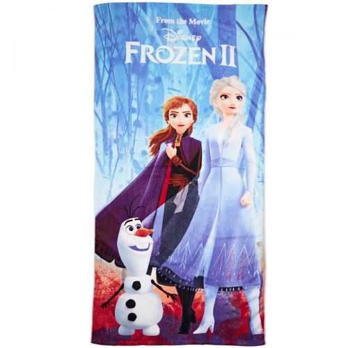 Frozen Towel