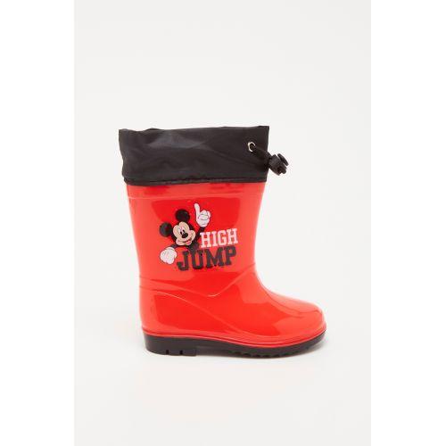 Botte Mickey